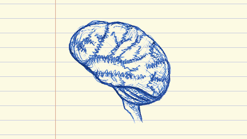 Lab Notes Brain, Image by Stephanie King